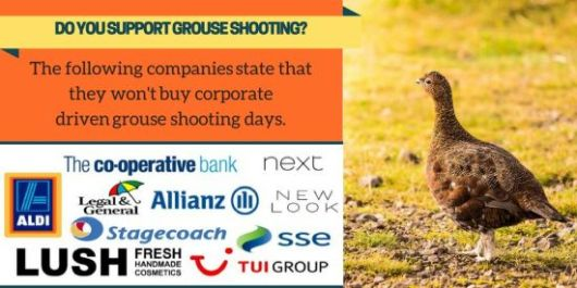 Ethical Consumer grouse shooting infographic